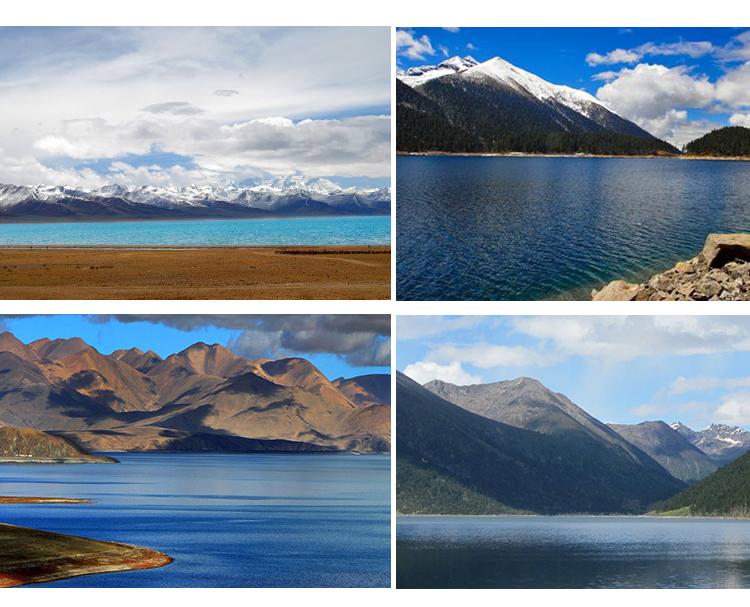 西藏2_14